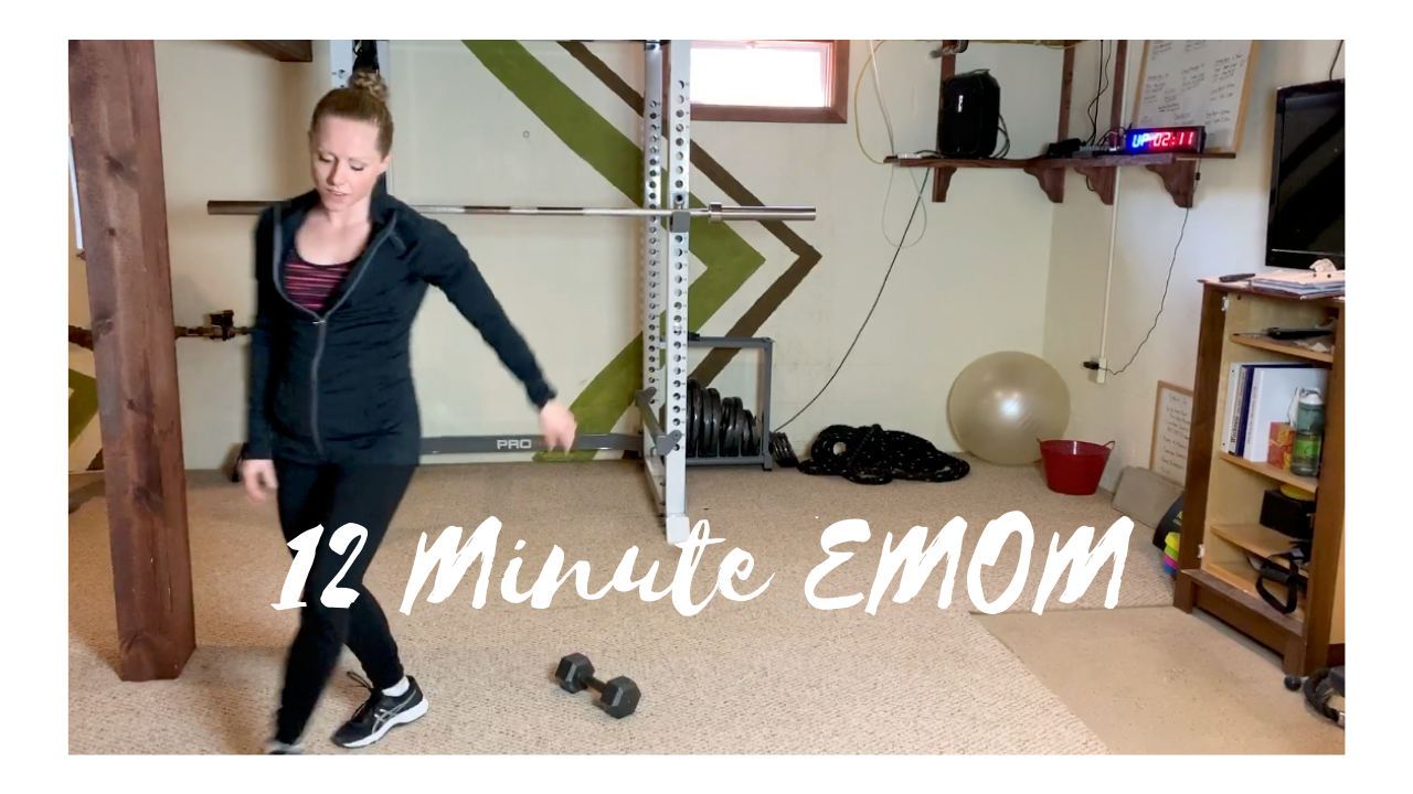 12 Minute EMOM – Bird Dogs and Burpees