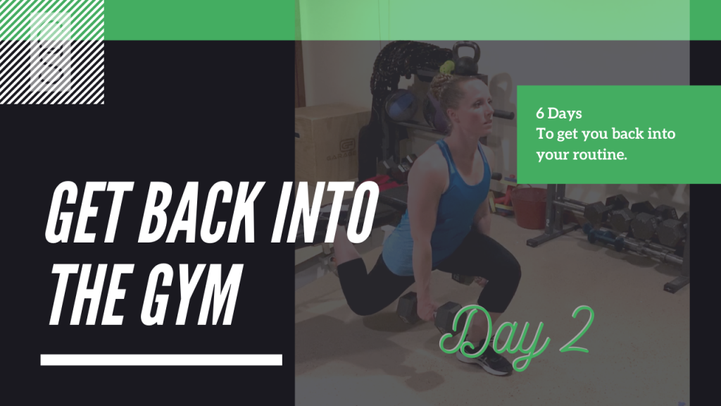 Get Back Into The Gym Day 2