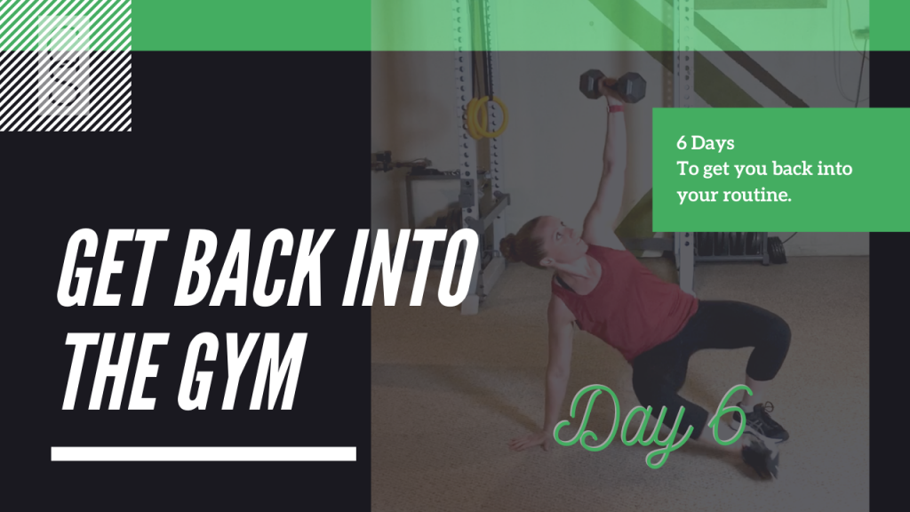 Get Back Into The Gym Day 6