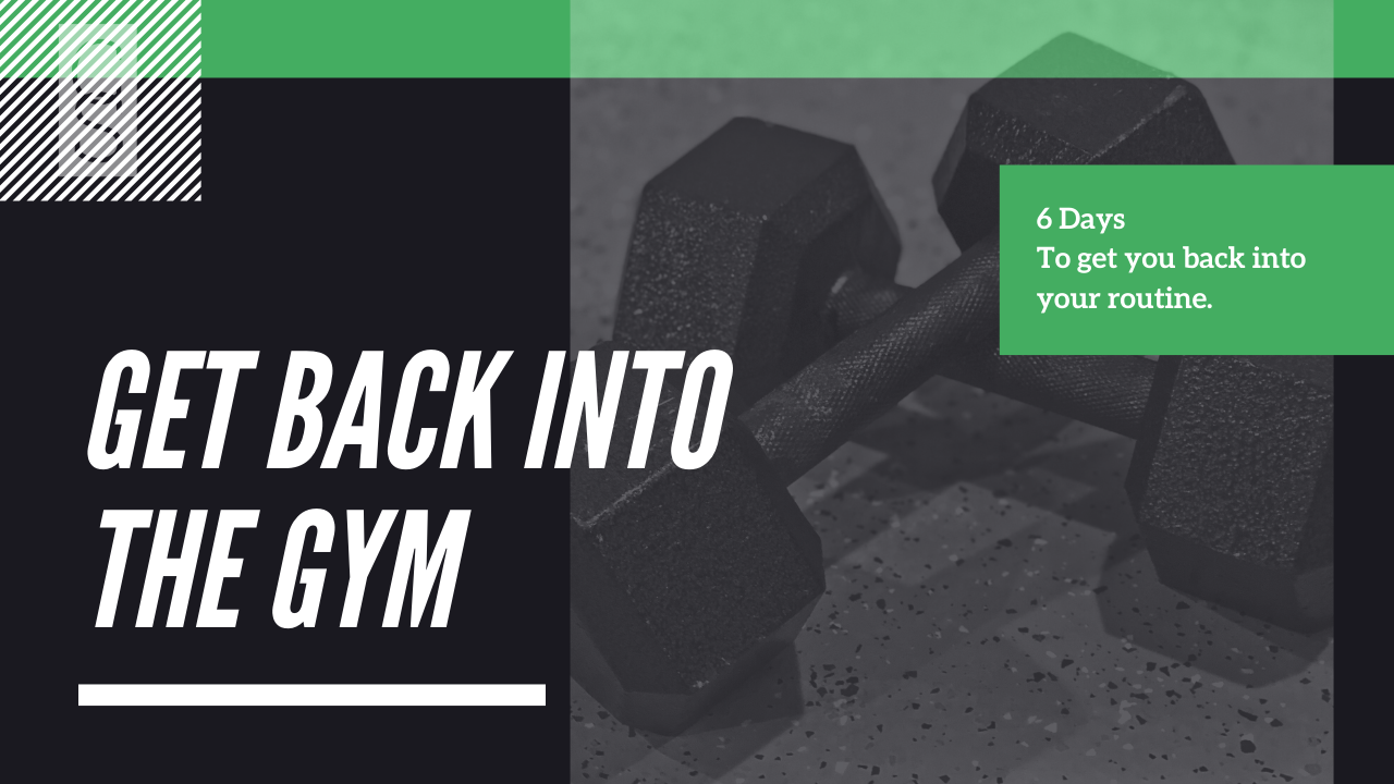 Get Back In The Gym Workout Program